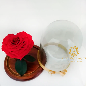 Heart-Shaped Preserved Jumbo Rose in a Dome