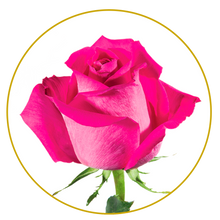 Load image into Gallery viewer, Bouquet 50 stems Topaz roses