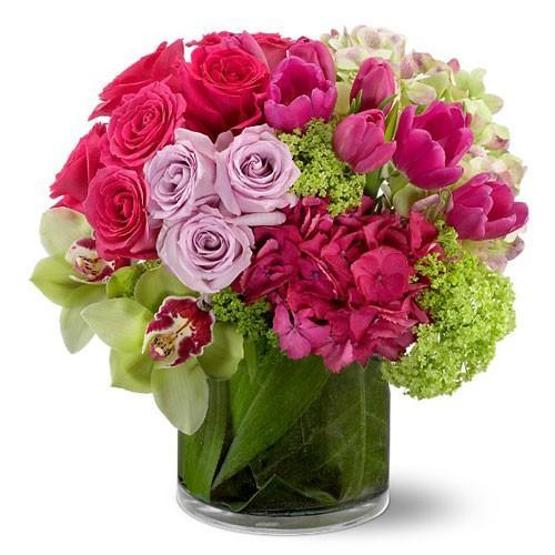 Tulips & Orchids - Excellent Florists
