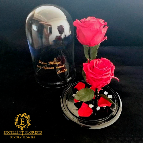 Two Red Preserved Red Bright Roses in a Glass Dome