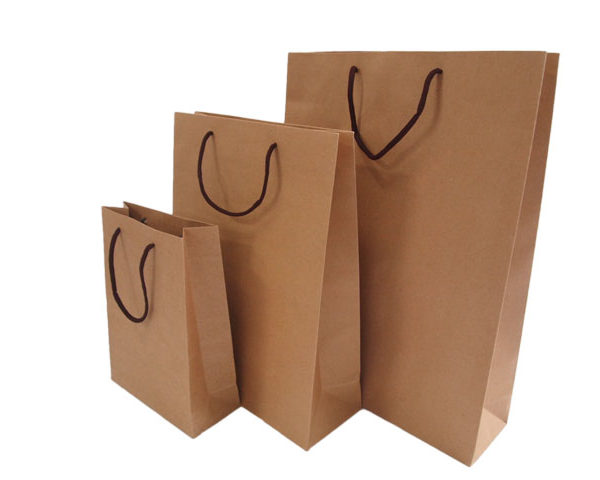 Brown Craft Paper Carrier