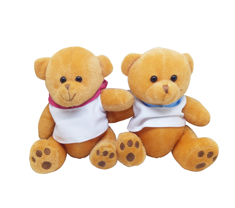15cm Teddy Bear with Hoodie