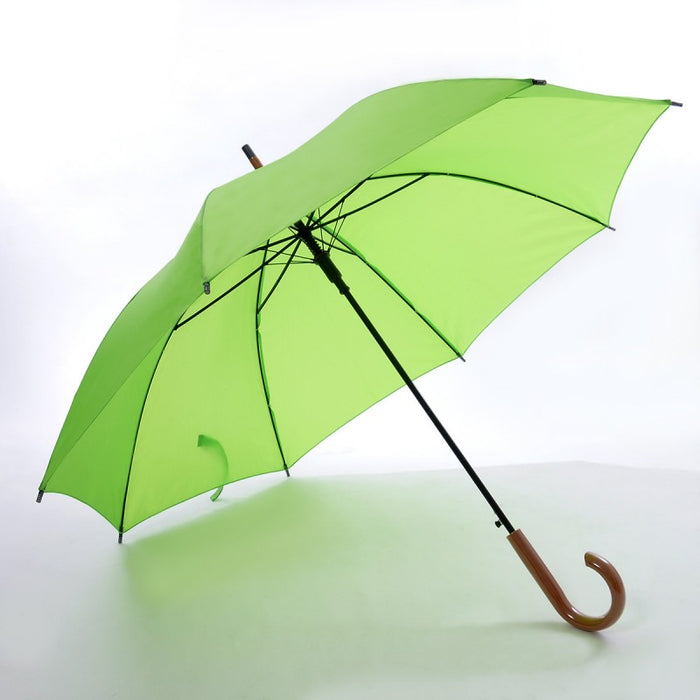 Large Foldable Umbrella 4