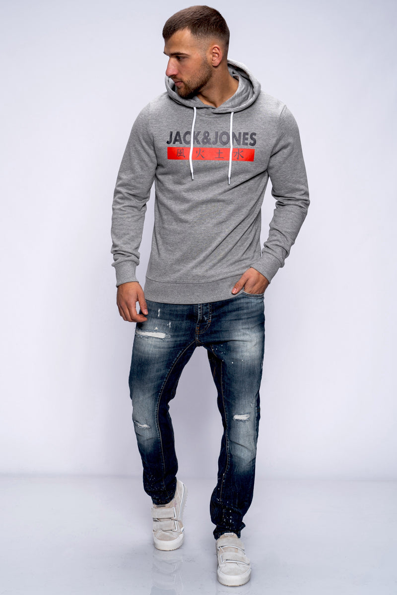 Hoodie ELEMENTS grey