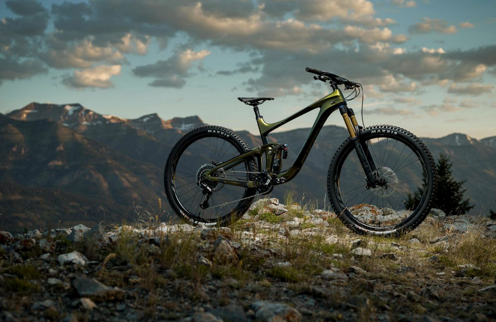 "2020 giant reign 29"" mountain bike"