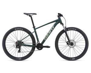 Buy 21 Giant Talon 3 Bike For The Riders Brisbane Giant MTB store