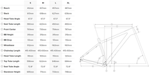 Load image into Gallery viewer, Buy 21 Santa Cruz Chameleon C 29 Frame For The Riders Brisbane MTB Store