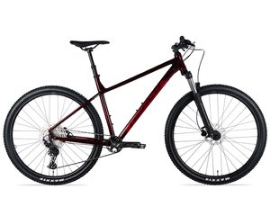 Buy 21 Norco Storm 1 29 Bike For The riders Brisbane mountain bike shop