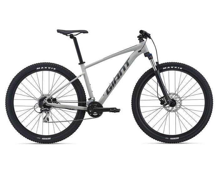 21 Giant Talon 29 2 Bike