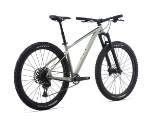 21 Giant Fathom 29 1 Bike