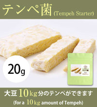 Tempeh Starter 20 gram (for 10 kg Tempeh) - The High Quality Ragi Tempe from Indonesia