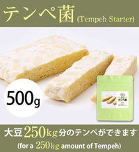 Tempeh Starter 500 gram (for 250 kg Tempeh) - The High Quality Ragi Tempe from Indonesia