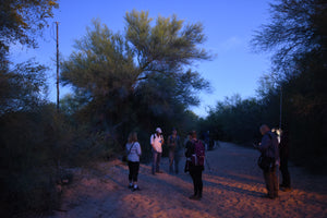 Acoustic Survey - Arizona: 8-13 April 2019