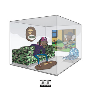 "The 6th Letter ""A Bathing Ape In A Hotbox"" Album"