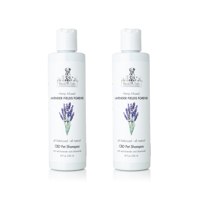 Lavender Fields Forever Hemp Pet Shampoo