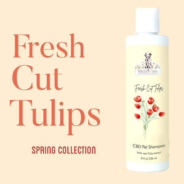 Fresh Cut Tulips Hemp Pet Shampoo