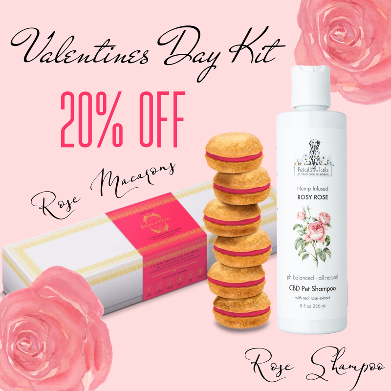 Rosy Rose CBD shampoo and Rose Dog Macarons