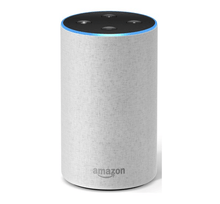 Load image into Gallery viewer, tall amazon echo in sandstone colour