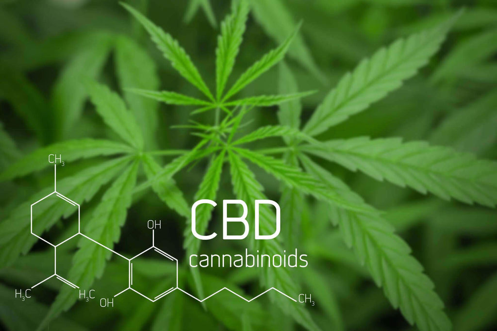 24 CBD Oil Health Benefits & Effects (Cannabidiol) + Dosage | Happy Bears