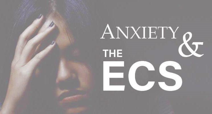 Anxiety and the Endocannabinoid System | HBE CAN INC