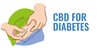 Can CBD Oil Be Used to Treat or Prevent Diabetes? What the Research Says | HBE CAN Inc.