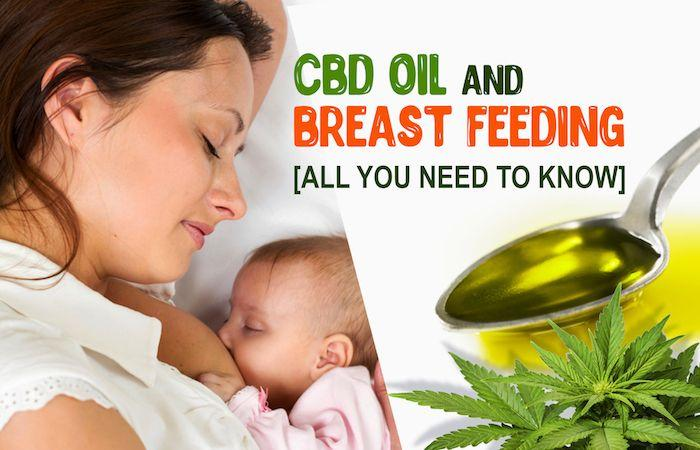 CBD Oil and Breastfeeding | HBE CAN Inc.