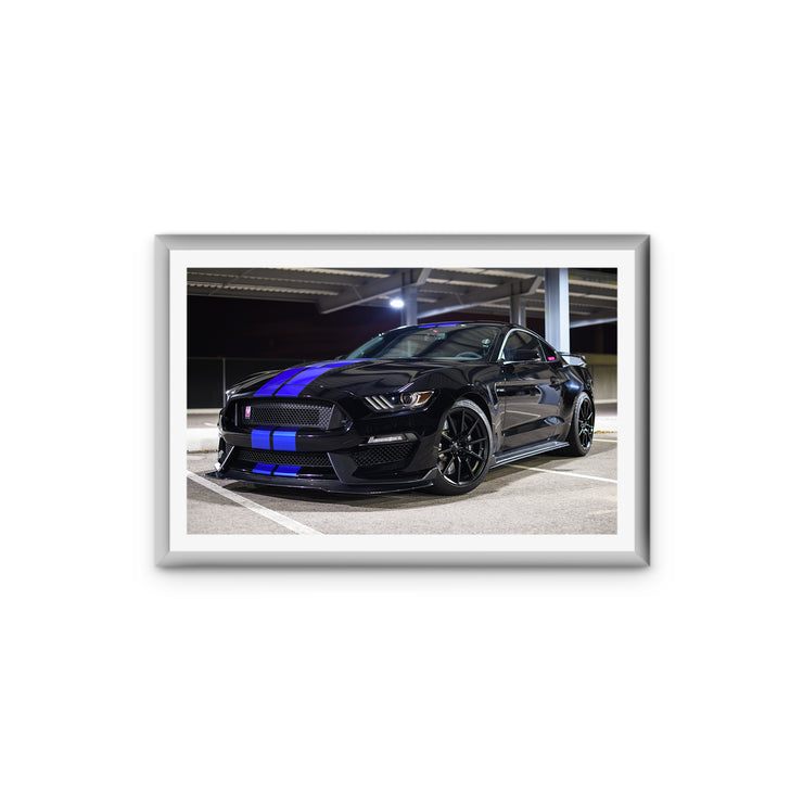 "Ford Mustang Shelby GT350 Stock (11"" x 17"")"