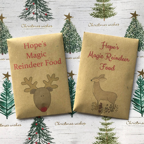 Magic Reindeer Food Kraft Envelope-The Persnickety Co