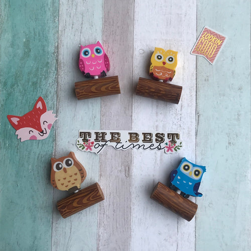 Cute Owl Eraser-The Persnickety Co