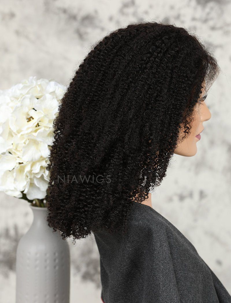 Load image into Gallery viewer, Afro Kinky Curly Human Hair Glueless Full Stretchable Wigs Preplucked Natural Hairline