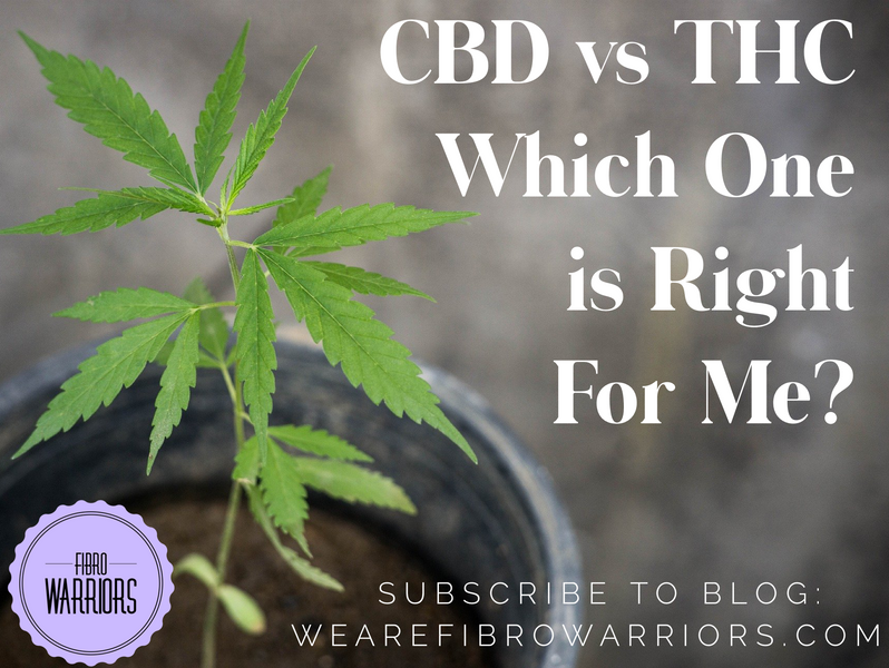 CBD vs THC: Which One is Right For Me?