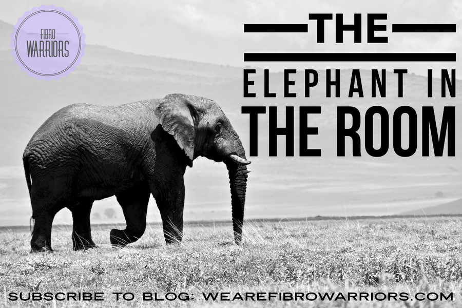 Guest Blog: The Elephant in the Room