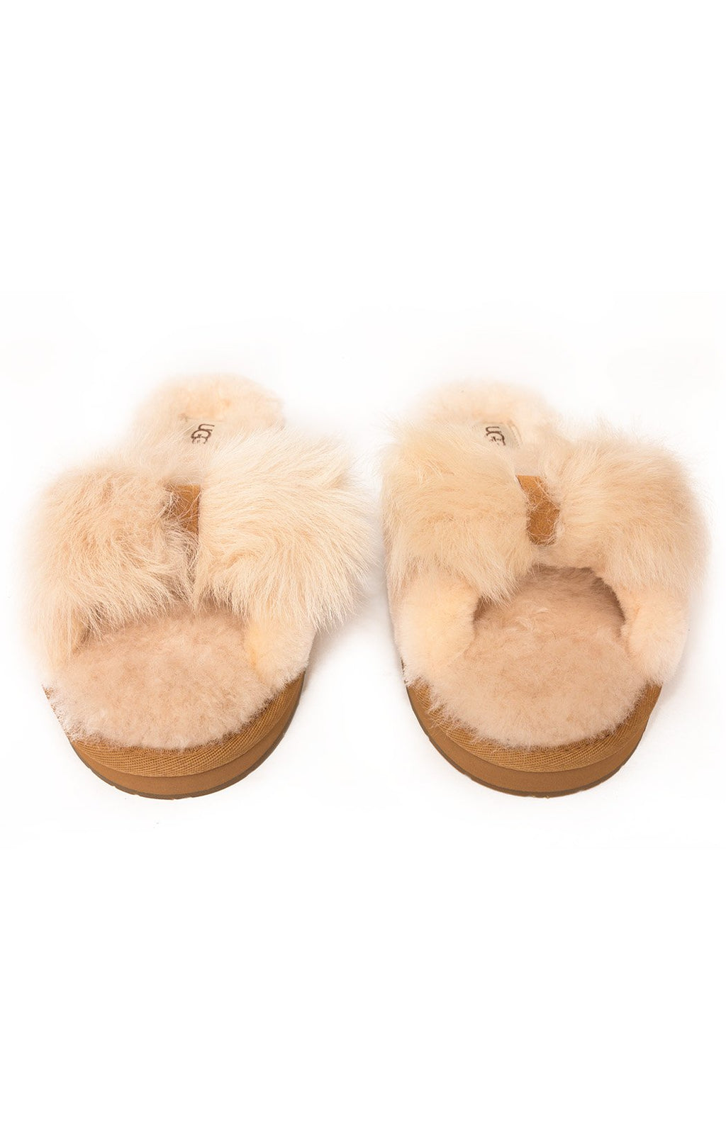 Front view of UGG Slippers Size: 8