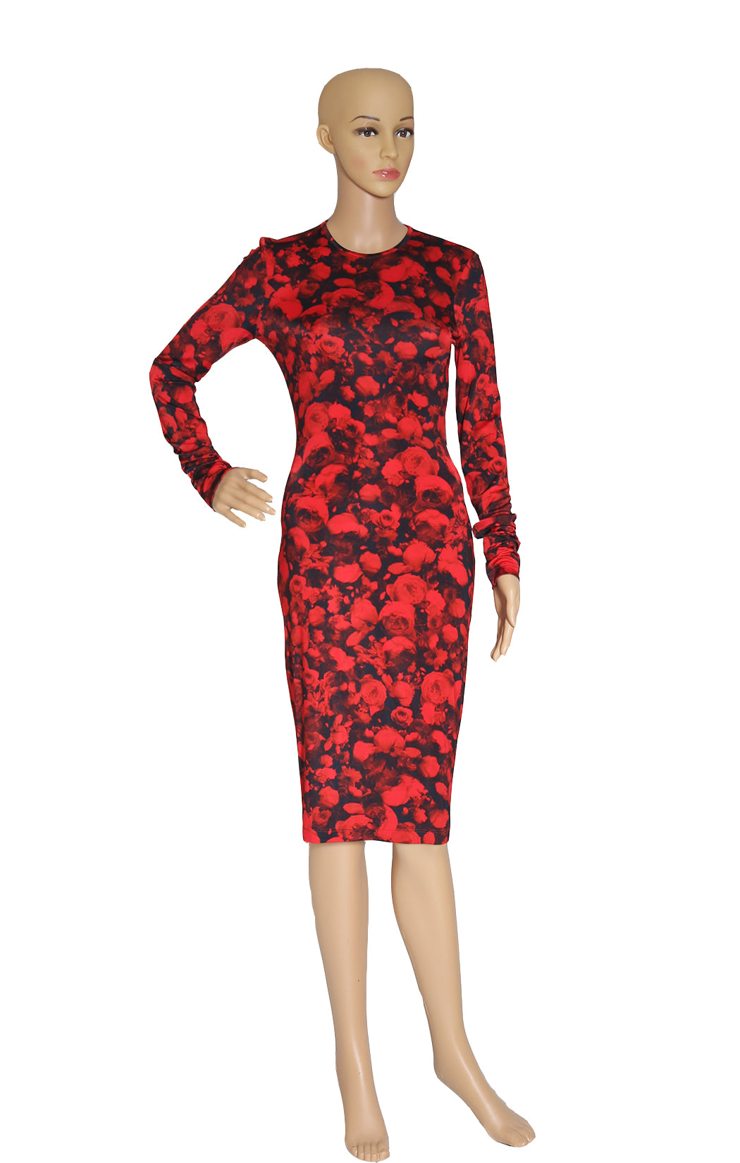 Front view of GIVENCHY Rose Print Dress Size: FR 36 (US 4)