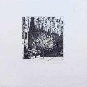 cat outram etching