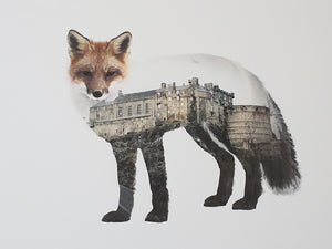 EDINBURGH FOX