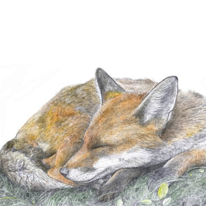 THE FOX AND THE GOOD DREAM PRINT by Hannah Longmuir