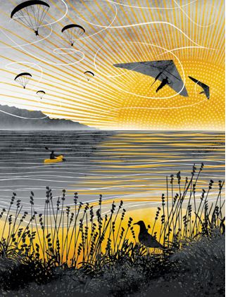 SUNSET FLIGHT - Ruth Thorp Print
