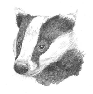 SLEEPY BADGER PRINT by Hannah Longmuir