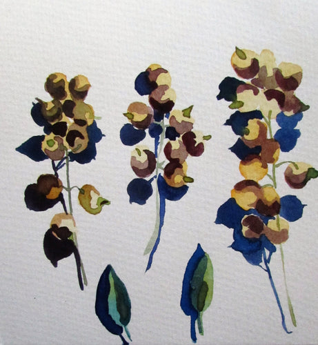 Watercolour and Mindfulness : Continuing Sunday June 27 Workshop 4