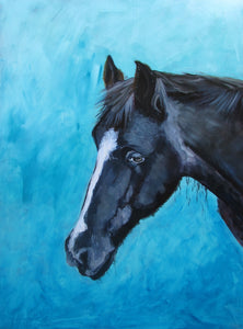 Custom Canine and Equine : commissioned portraits