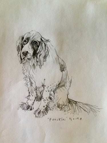 Custom Canine , Equine and Feline : commissioned portraits