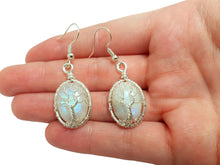 Load image into Gallery viewer, Moonstone tree of life earrings