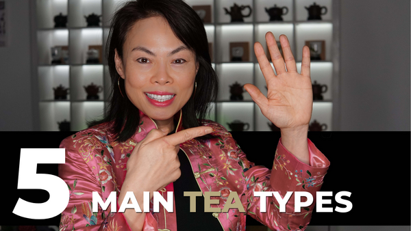 Five Tea Types You Need To Know | Getting Started in Chinese Tea