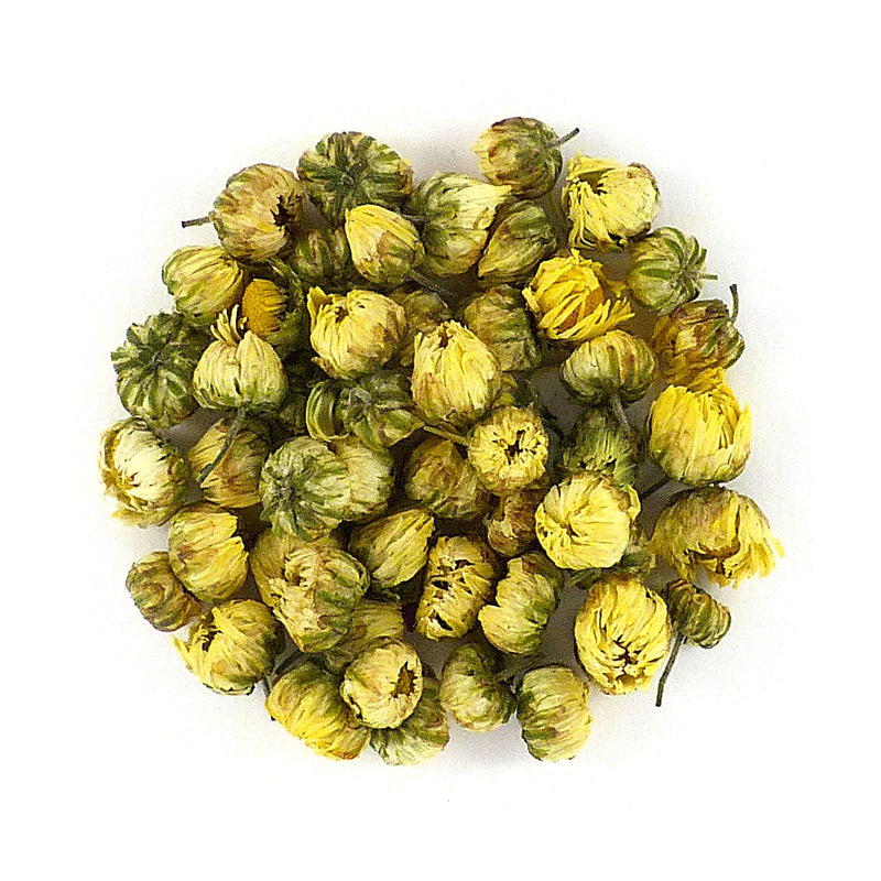 Chrysanthemum Buds 杭州 胎菊
