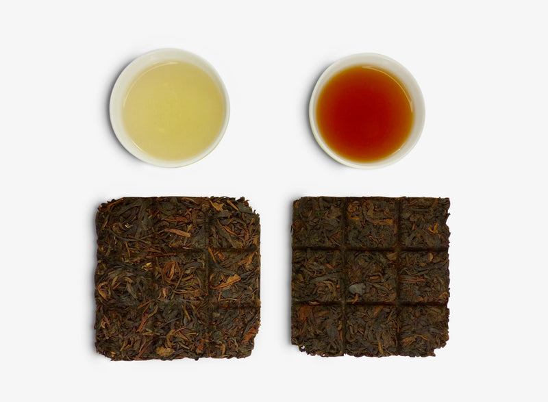 Yunnan Bingdao Pu-erh Collection 老樹冰島系列