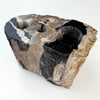 Petrified Wood Luxury Toothbrush & Toothpaste Holder, 3 Hole (C)