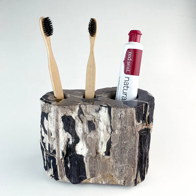 Petrified Wood Luxury Toothbrush & Toothpaste Holder, 3 Hole (H)