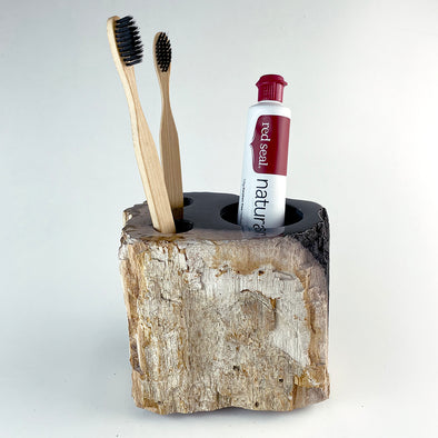 Petrified Wood Luxury Toothbrush & Toothpaste Holder, 3 Hole (J)