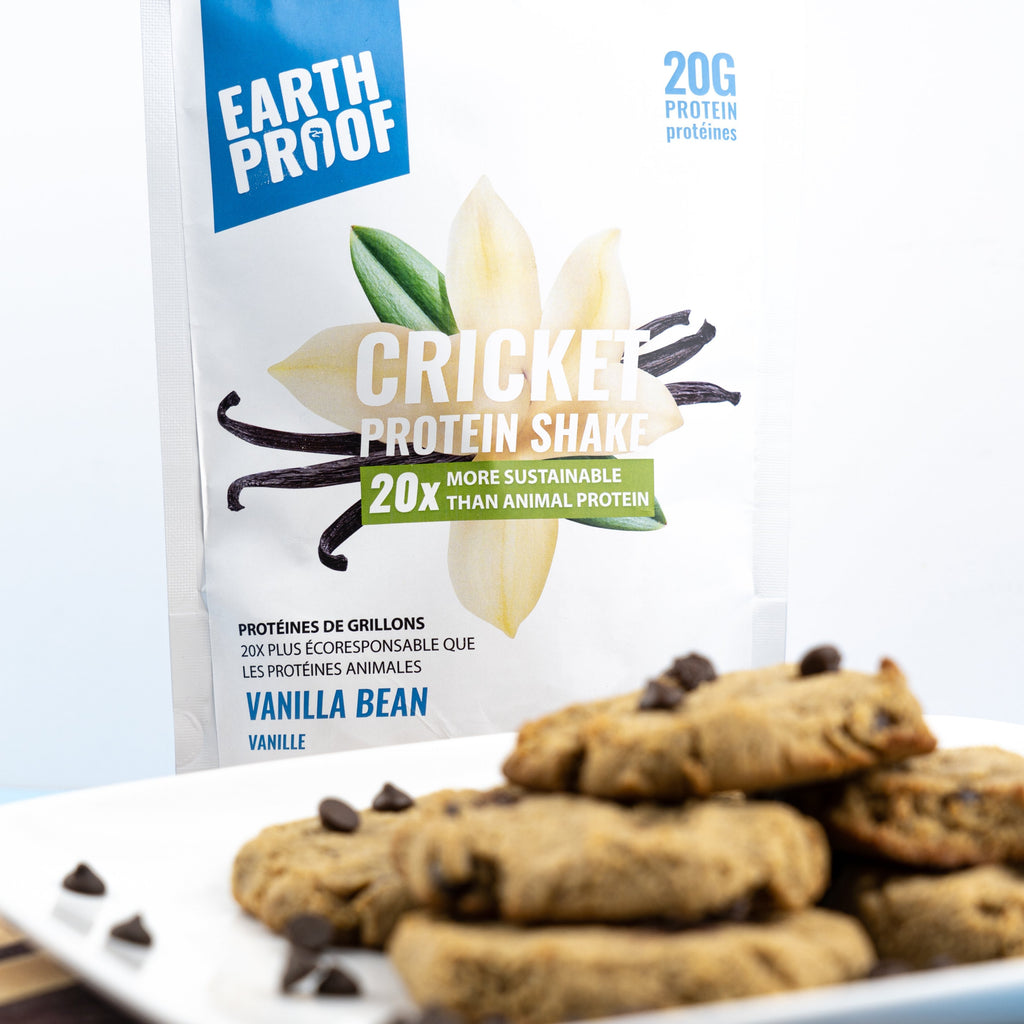Almond Flour and Chocolate Chip Cricket Protein Cookies | Earthproof Protein